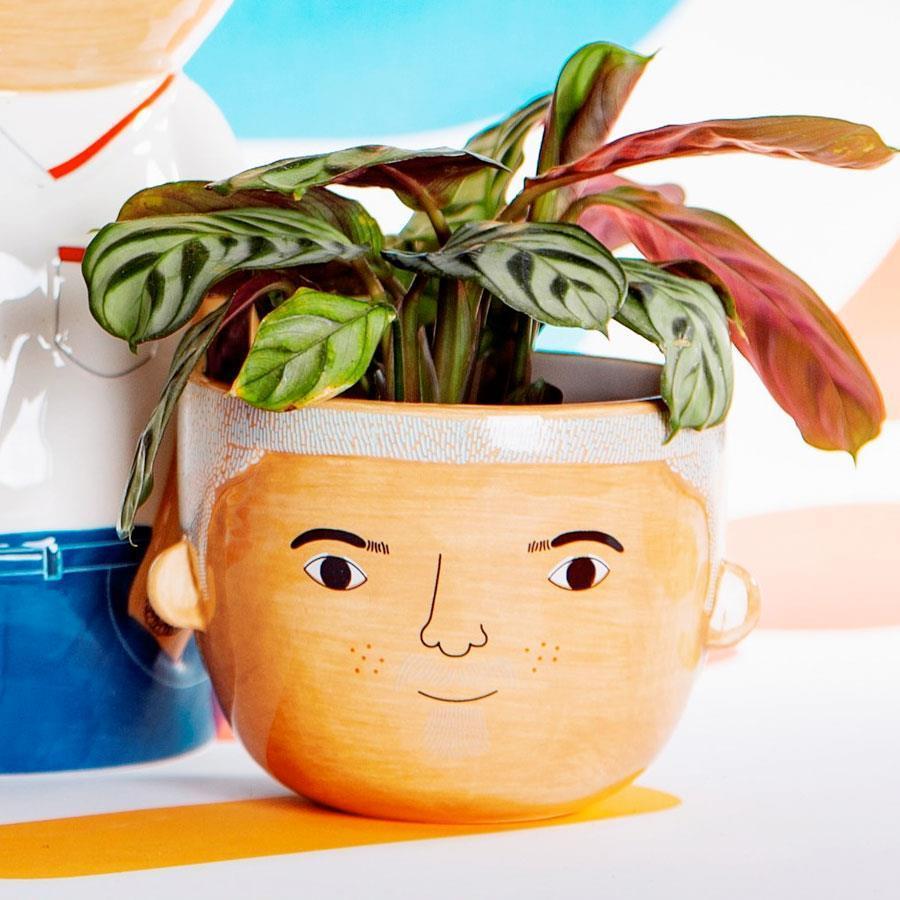 Mini Bradley Ceramic Planter - Maiagifts